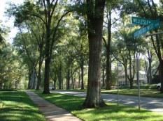 Myers Park 2